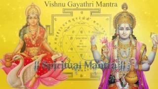 Om Narayanaye Vidmahe Vasudevaya Dhimahi Tanno Vishnu Prachodayat - Narayana Gayatri Mantra
