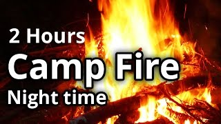 Virtual Campfire Video - Fire in the Woods - Meditation, Sleep Sounds - 2 Hours HD
