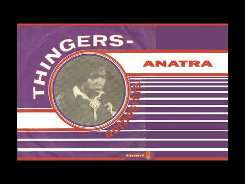 Anatra - THINGERS AMBOSITRA - Discomad 466 747