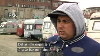 Hälften av svenskarna vill förbjuda tiggeri - Nyheterna (TV4)