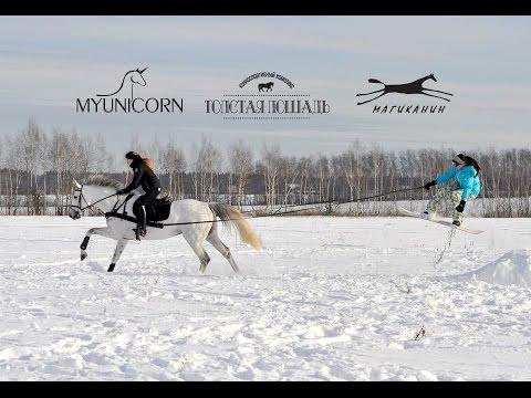 Скиджоринг - фрирайд на сноуборде за конем
