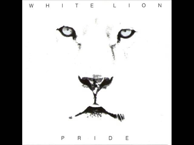 white-lion-lonely-nights-adrian-wiater