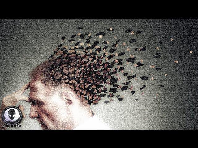 memory-transplants-no-longer-a-fantasy