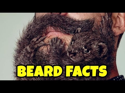 15 Beard Facts that will make you appreciate your beard (a.k.a. Real Man Facts)