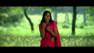 Avakaya Biryani Telugu movie song - Veerudena Video song - Kamal Kamaraju, Bindhu Madhavi