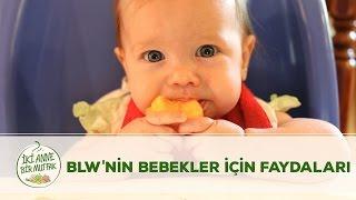 blw nin bebekler ic in faydaları nedir   blw 6 7   iki anne bir mutfak
