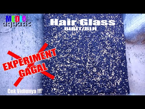 hair-glass-gagal