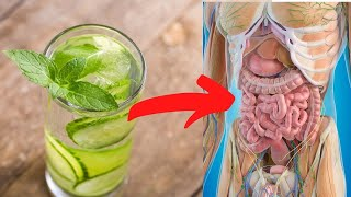 5 Reasons To Drink Mint Water | Healthy Living Tips