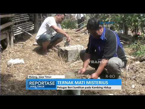 On The Spot Terbaru ~ 7 Manusia Yang Mempunyai Mata Paling Aneh Di Dunia from YouTube · Duration:  5 minutes 44 seconds