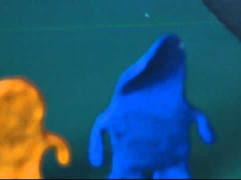The Slug Thing (2007)