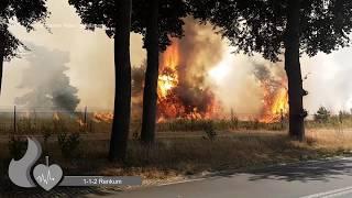 **Primeur** veel brandweer met spoed bij natuurbrand op park de hoge Veluwe in Otterlo