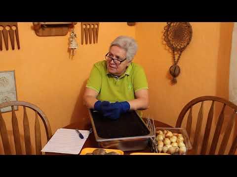 97 Когда и как вносить перегной и компост