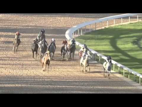 The Kings Court: Oaklawn Park Stakes