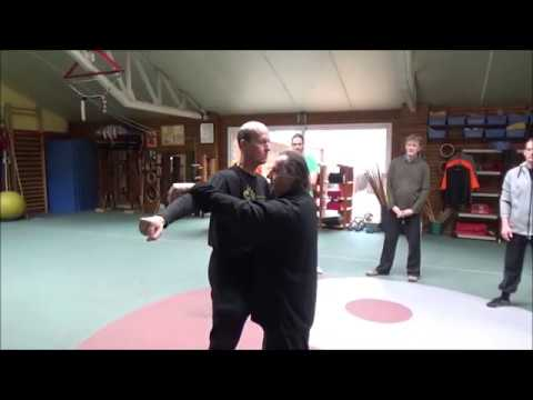 Special workshop qi and fajin by GM Walter Toch