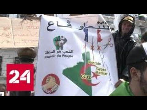 В Алжире идут мощнейшие акции протеста - Россия 24