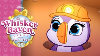 Tunnels of Fun   Whisker Haven Tales with the Palace Pets   Disney Junior