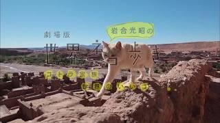「劇場版 岩合光昭の世界ネコ歩き コトラ家族と世界のいいコたち」吉岡里帆ナレーション入り本予告(30秒) thumbnail
