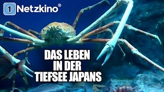 Das Leben in der Tiefsee Japans (Dokumentation)