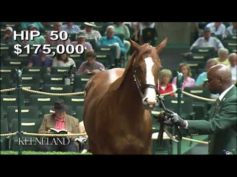 Justify as a Keeneland September Yearling