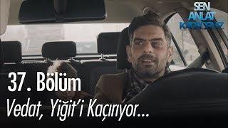 Vedat, Yiğiti Kaçırıyor - Sen Anlat Karadeniz 37. Bölüm