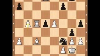 Download lagu Magnus Carlsen vs Naiditsch Chess Olympiad 2014