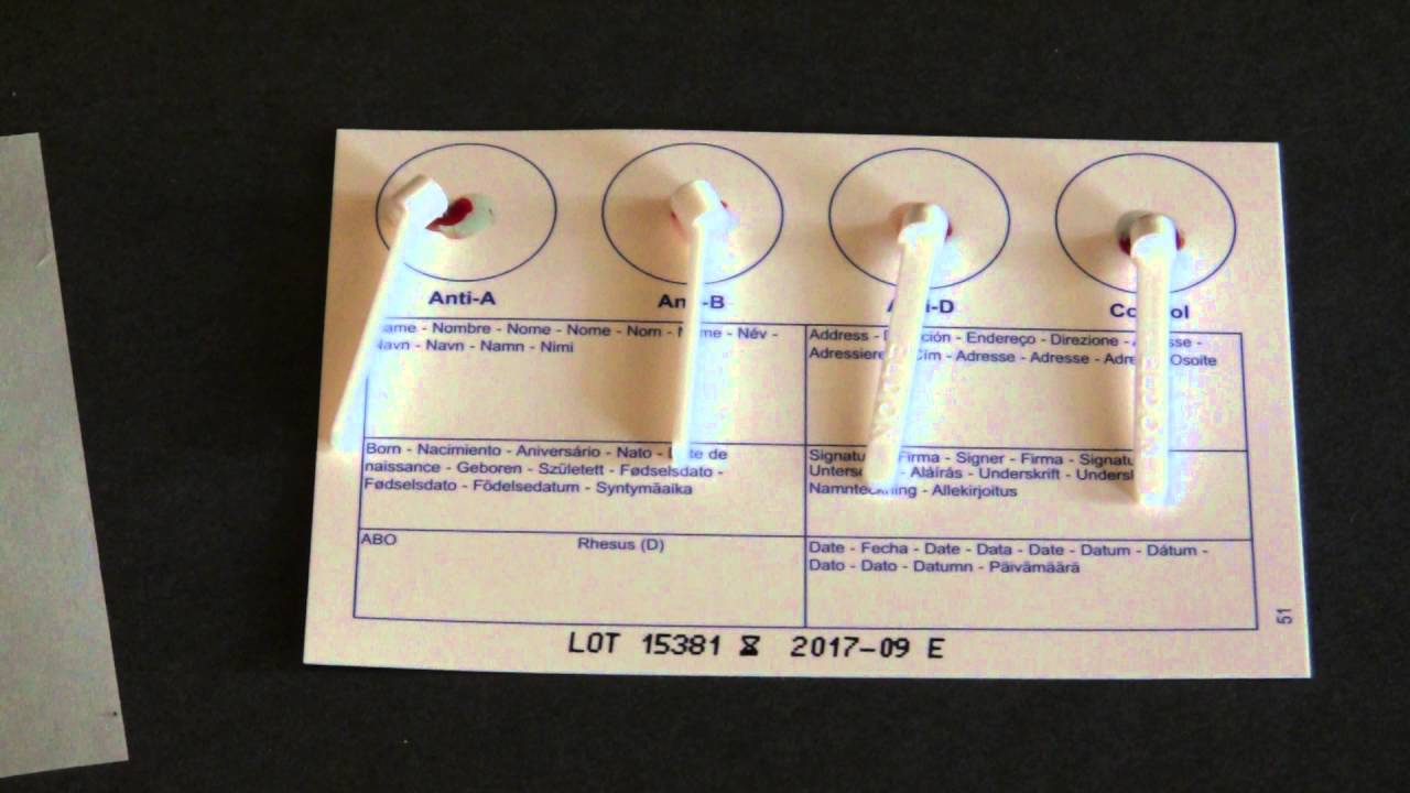 How To Test Your Blood Type At Home [EASY & UNDER $10 ...