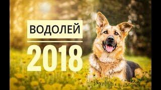 ВОДОЛЕЙ 2018. Самый точный гороскоп онлайн для всех