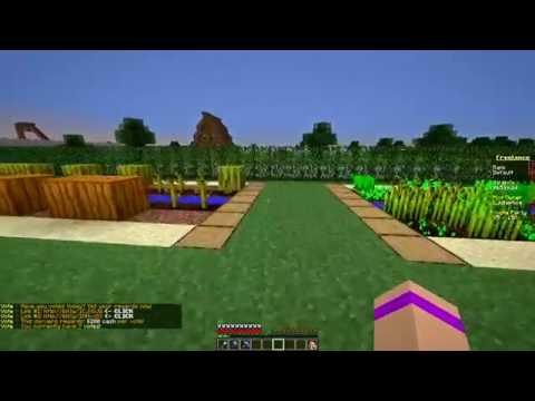 Minecraft - ženska ruka - opet. Paradise.mc server-freelance