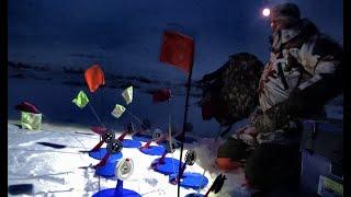 РАССТАВИЛИ ЖЕРЛИЦЫ НА РАССВЕТЕ И НАЧАЛИ ЛОВИТЬ ОКУНЯ!Рыбалка на незнакомом озере,первый лед.