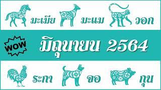 #ดวงรายเดือน #มิถุนายน2564 (มะเมีย, มะแม, วอก, ระกา, จอ, กุน) #ดูดวงตามปีนักษัตร #ดูดวงมิถุนายน