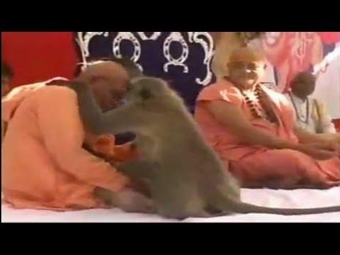 Hanumanji Visits Ram Katha | Hari Anant Hari Katha Ananta