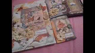 Папка для документов/обложки на паспорт и автодокументы/скрапбукинг(, 2015-09-04T18:48:12.000Z)