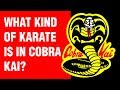 What Kind of Karate is in Cobra Kai? | ART OF ONE DOJO