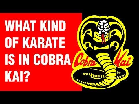 What Kind of Karate is in Cobra Kai? | ART OF ONE DOJO