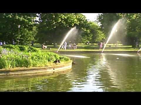 Hot Polish Park