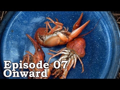 Catch n Cook Freshwater YABBIES, Prawns | The Wilderness Living Challenge 2016 S01E07 - ONWARD
