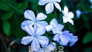 박강수 - 사람아 사람아