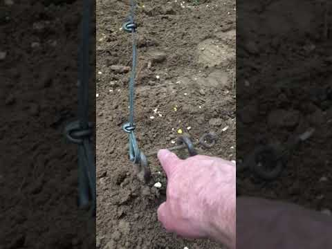 Cheap And Easy To Build Hog Trap Still Working For Over 20 Years!