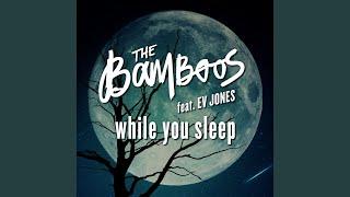 Play While You Sleep (feat. Ev Jones)