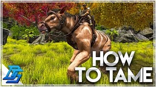 How To Tame A Chalic๐therium - Ark: Survival Evolved