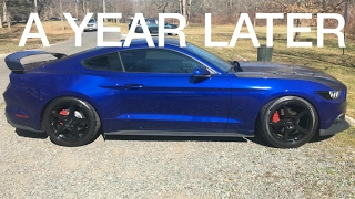 Is Ceramic Coating worth it, would I get it again? *Honest Review*
