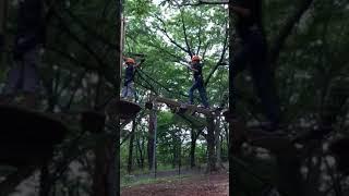 那須の森 空中アスレチックNOZARU thumbnail