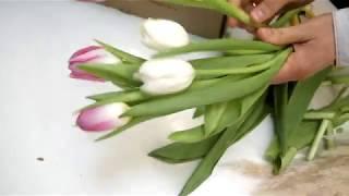 Простой букет-подарок на День Святого Валентина | ArtHolidays