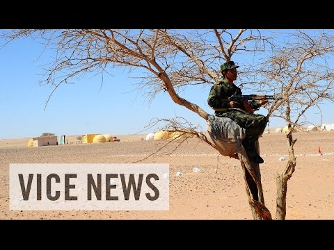 Escaping Moroccan Occupation: The Sahara's Forgotten War (Part 1)