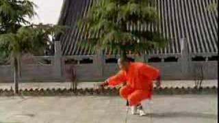 Repeat youtube video Shaolin Kung Fu - Taizu Chan quan