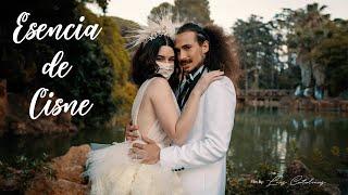 ESENCIA DE CISNE. Inspiración boda.
