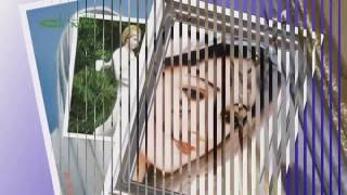 Lạy Mẹ Mến Yêu - Phan Đình Tùng (Giới Trẻ Công Giáo Đa Minh - Kênh Ba - Cà Mau)