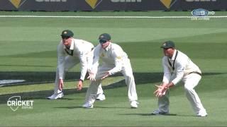 Quick Wrap: Lyon roars as Aussies find their bite