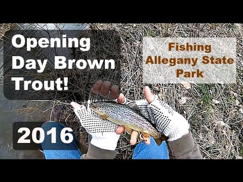 Opening Day Trout Fishing 2016 (Allegany State Park)