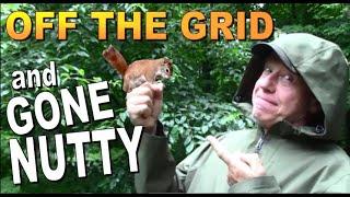 OFF GRID AND GONE NUTTY   A Backwoods Living Vlog # 103